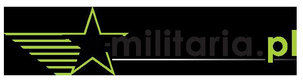 logo emilitaria 2014